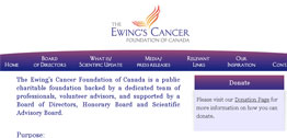 Ewing's Cancer Small Portfolio Screen Capture