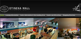 Otineka Mall Small Portfolio Screen Capture